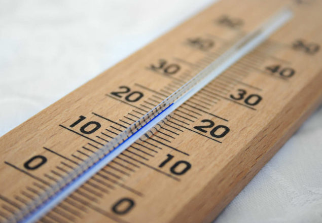 use maverick thermometers review to find the best thermometer
